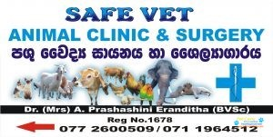 Advanced Veterinary Medical Center4.jpg