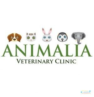 Animalia Veterinary Clinic .jpg