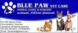 BLUE PAW vet care.jpg
