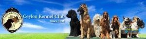 Ceylon Kennel Club4.jpg