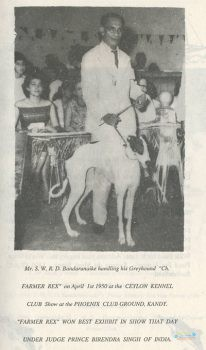 Ceylon Kennel Club5.jpg