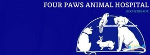 FOUR PAWS Animal Hospital3.jpg