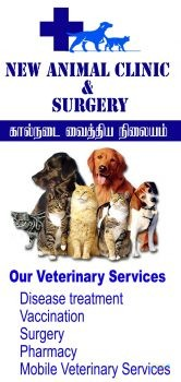 New Animal clinic and Surgery Veterinary Hospital5.jpg