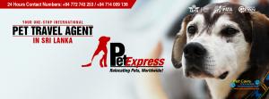 Pet Express - Sri Lanka2.png