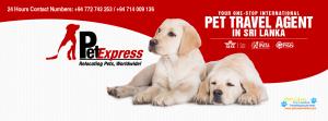 Pet Express - Sri Lanka3.png