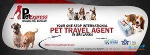 Pet Express - Sri Lanka5.jpg