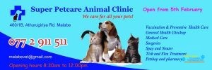 Super Petcare Animal Clinic2.jpg