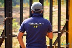 Universal Vets4.jpg