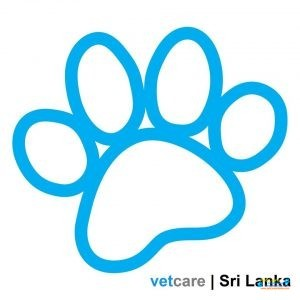 Vetcare Animal Clinic2.jpg