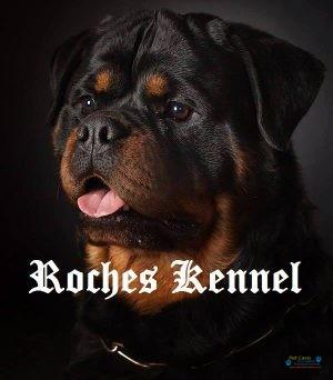 Von Haus Roches Kennel2.jpg