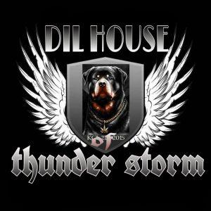 dilhouse3.jpg