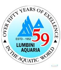 lumbini_aquaria_wayamba_ltd.jpg